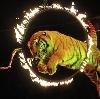 Цирки в Умете